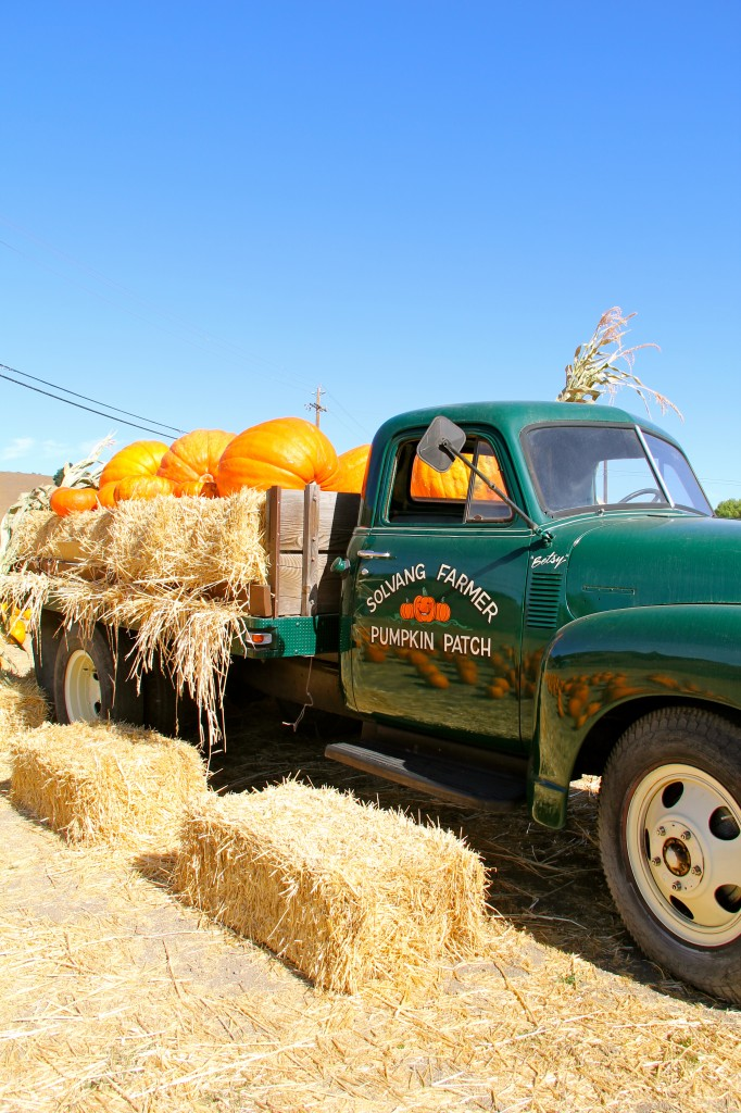 solvang pumpkin patch