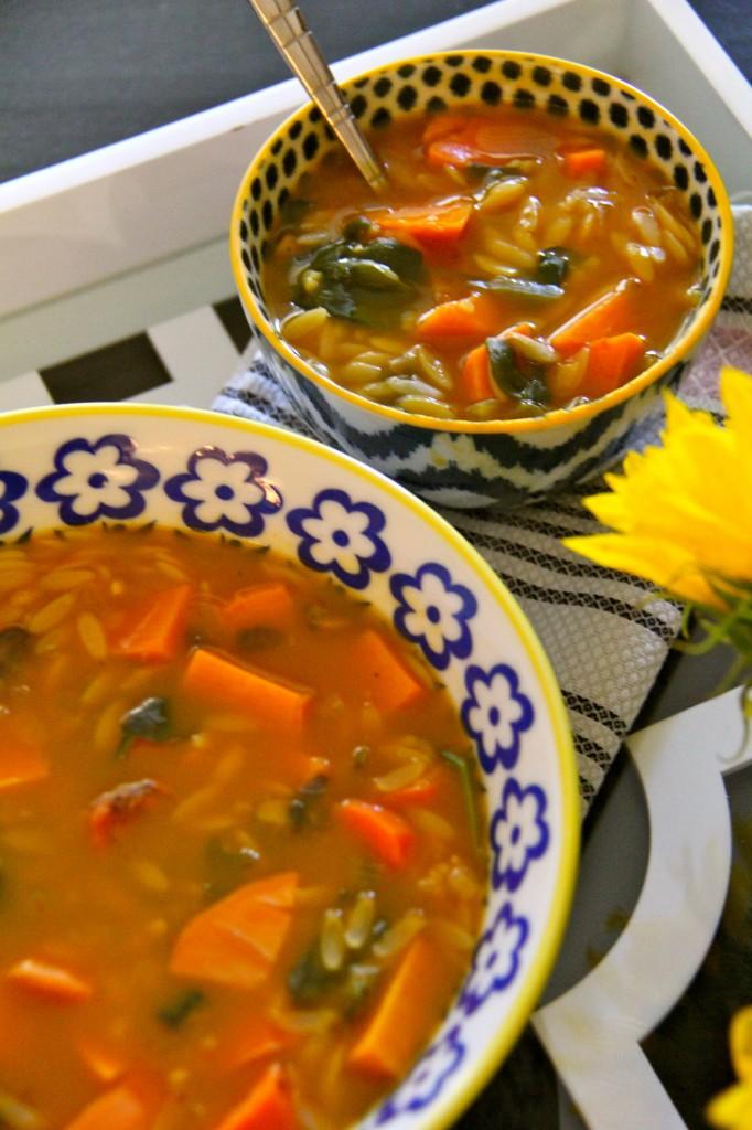 orzo veggie soup