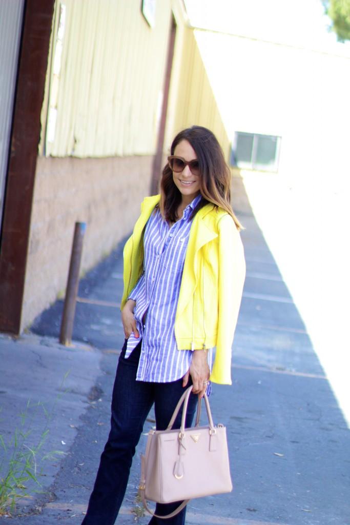 yellow jacket, itsy bitsy indulgences