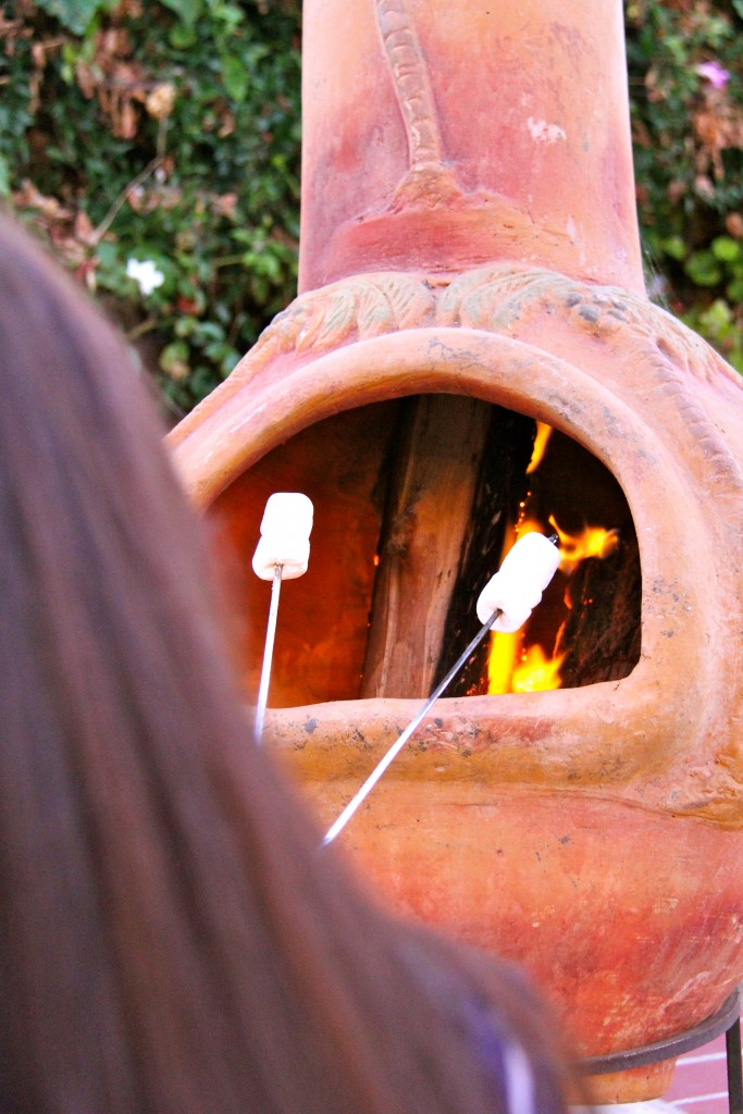 roasting smores