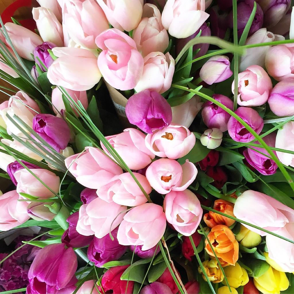 tulips, itsy bitsy indulgences