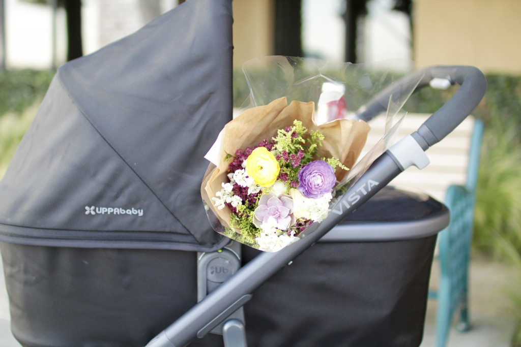uppababy stroller review, itsy bitsy indulgences